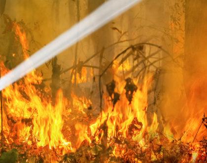 Australia Bushfires May Lead to Disruption of Asbestos